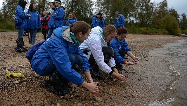 Волонтёры очистили берега Байкала от мусора